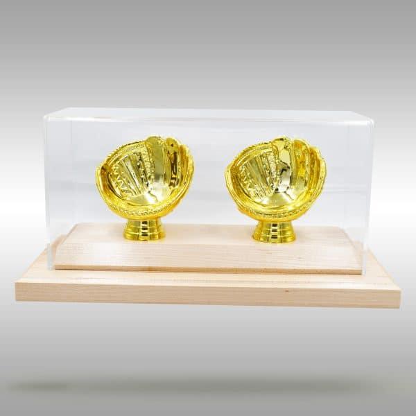 Gold Glove Baseball Case - 2 baseballs